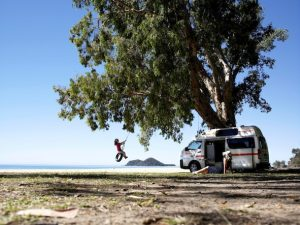 Britz campervans hire swinging tree